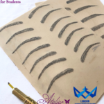 Microblading Homeworks by Students on Artificial Skin from Starter Kit